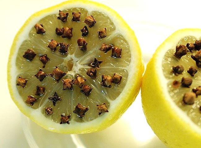 how to get rid of ants with lemons