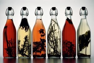 Alcoholic tinctures