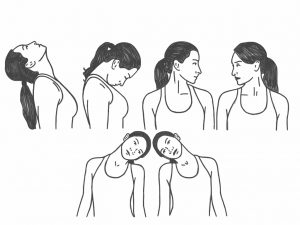 exercises for the neck