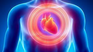 cs-heart-disease-gene-large[1]