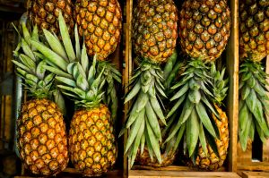 high-angle-view-of-pineapples-in-crate-587191515-581101da5f9b58564c6a87df[1]