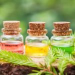 Top-5 Most Effective Natural Oils from Wrinkles